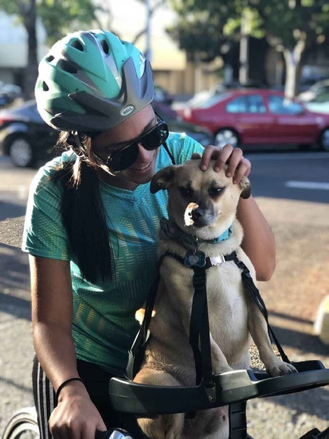 自転車用のドッグシート「Buddyrider」