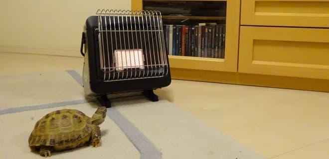 カセットガスで部屋を暖める、イワタニ「カセットガスストーブ ポータブルタイプ マイ暖」