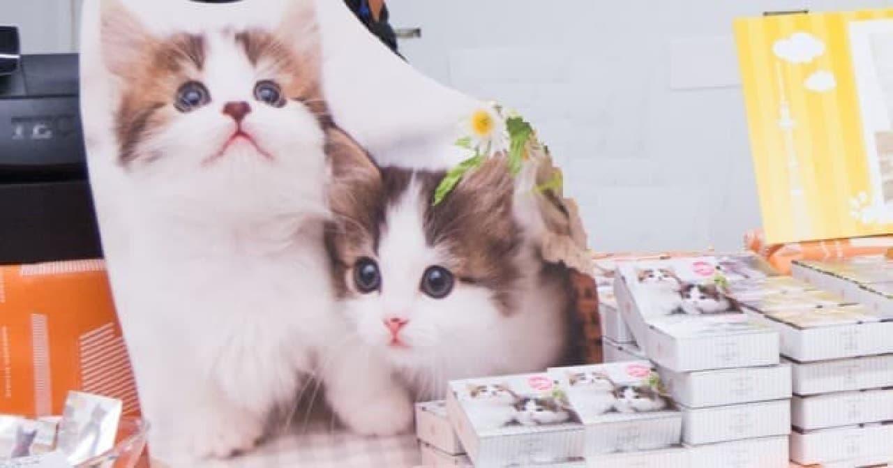 ホワイトデーにぴったりのネコクッキー「CAT PICクッキーズ」