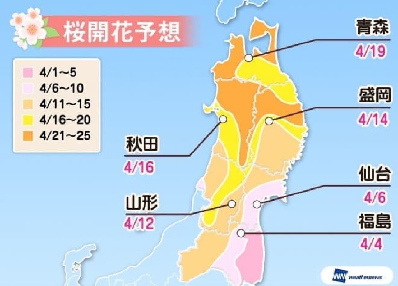 ウェザーニューズが2018年「第五回桜開花予想」を発表