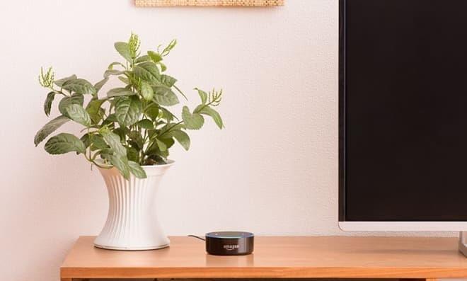 コンパクトなAmazon Echo Dot