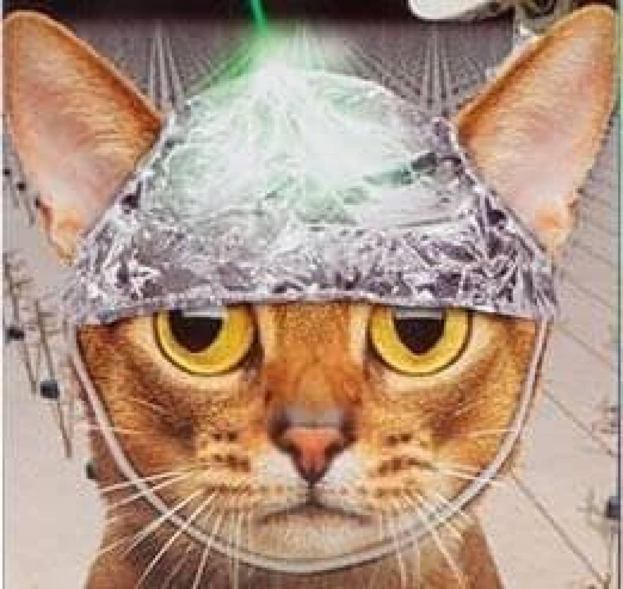 """飼い猫を""""やつら""""の手から取り戻す帽子「TIN FOIL HAT FOR CATS」"""