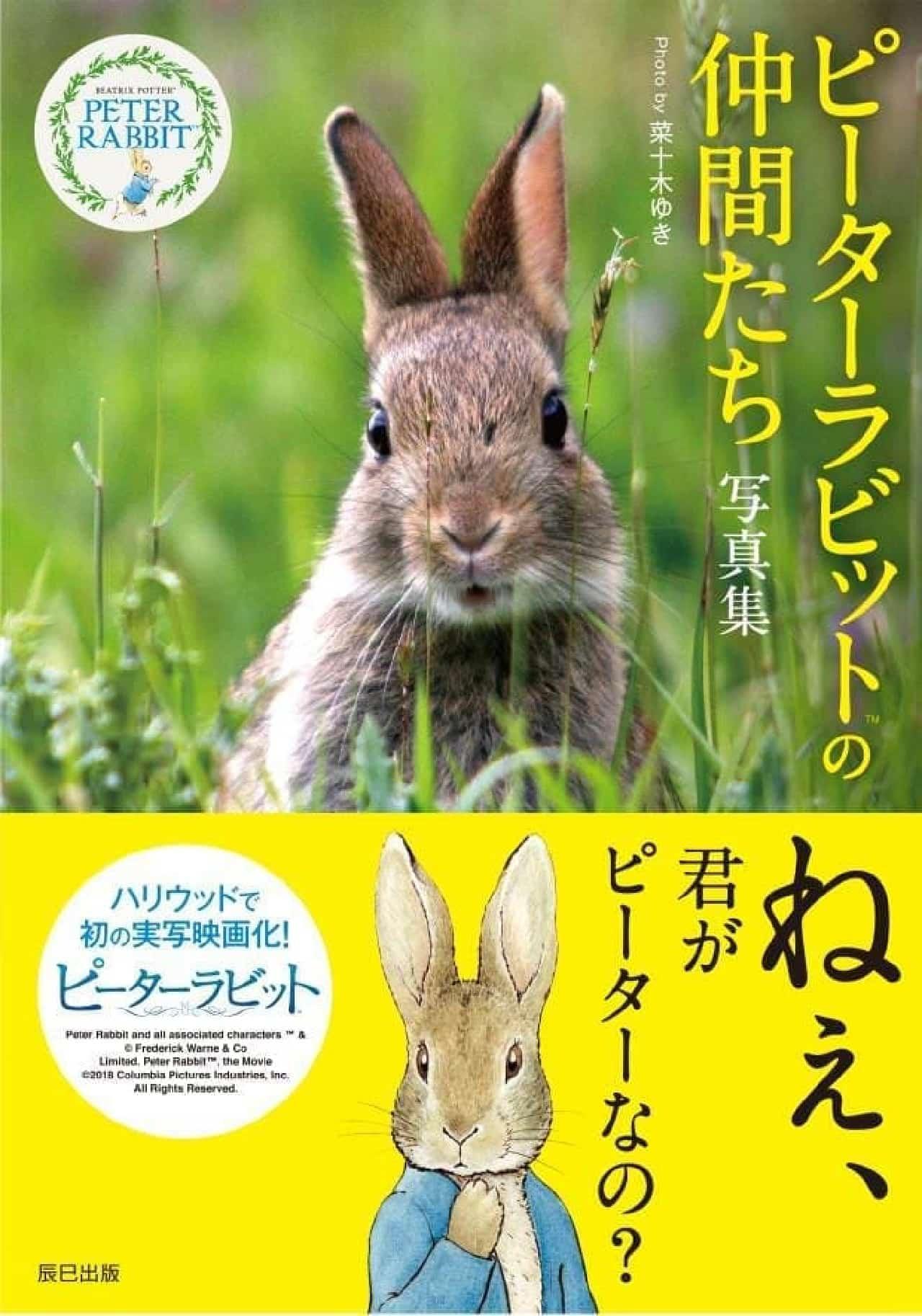 「ピーターラビットの仲間たち 写真集」、5月16日発売!
