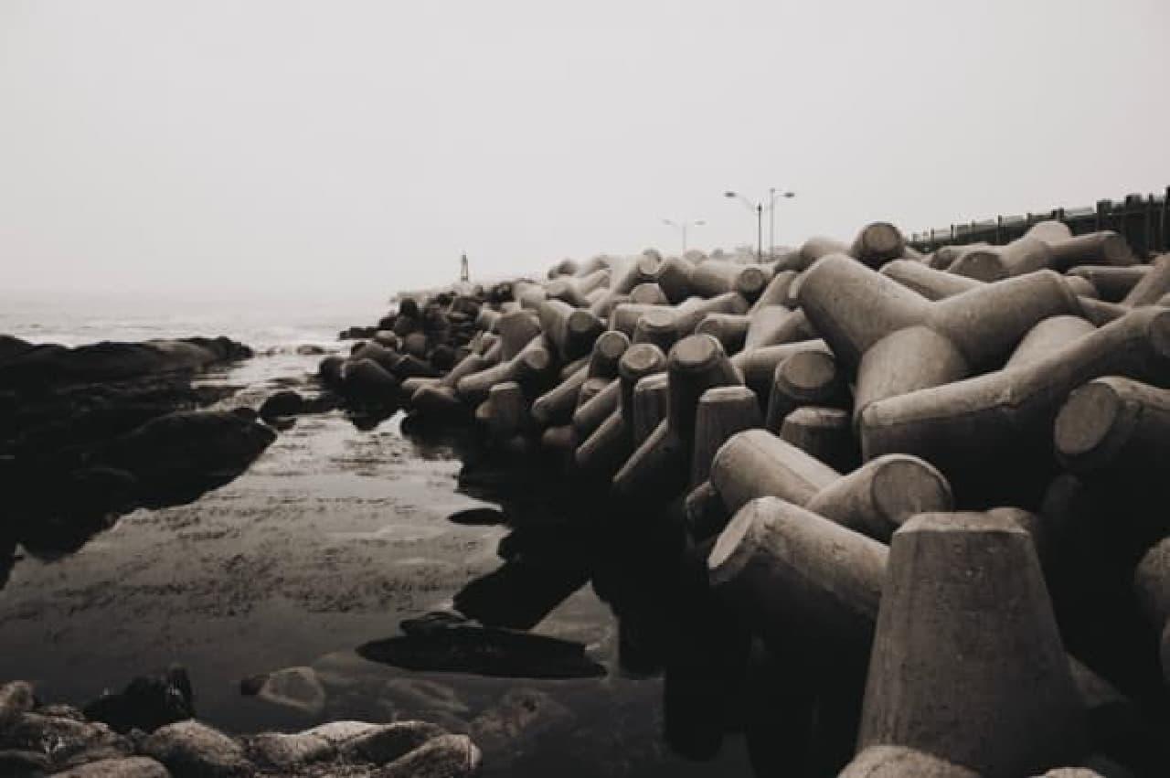 護岸に置かれた消波ブロック