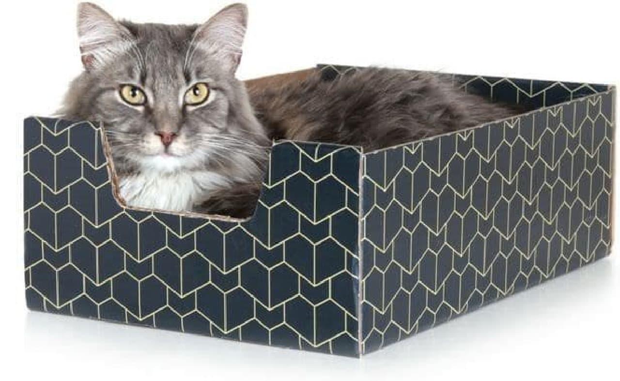 ネコ専用ダンボール「Purrfect Cat Box」