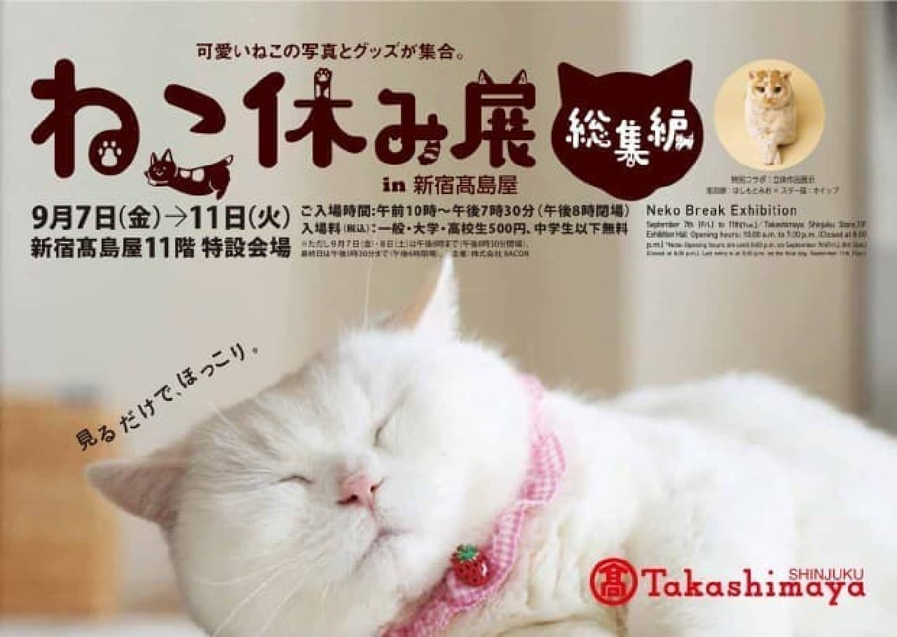 「ねこ休み展」総集編、新宿高島屋で開催