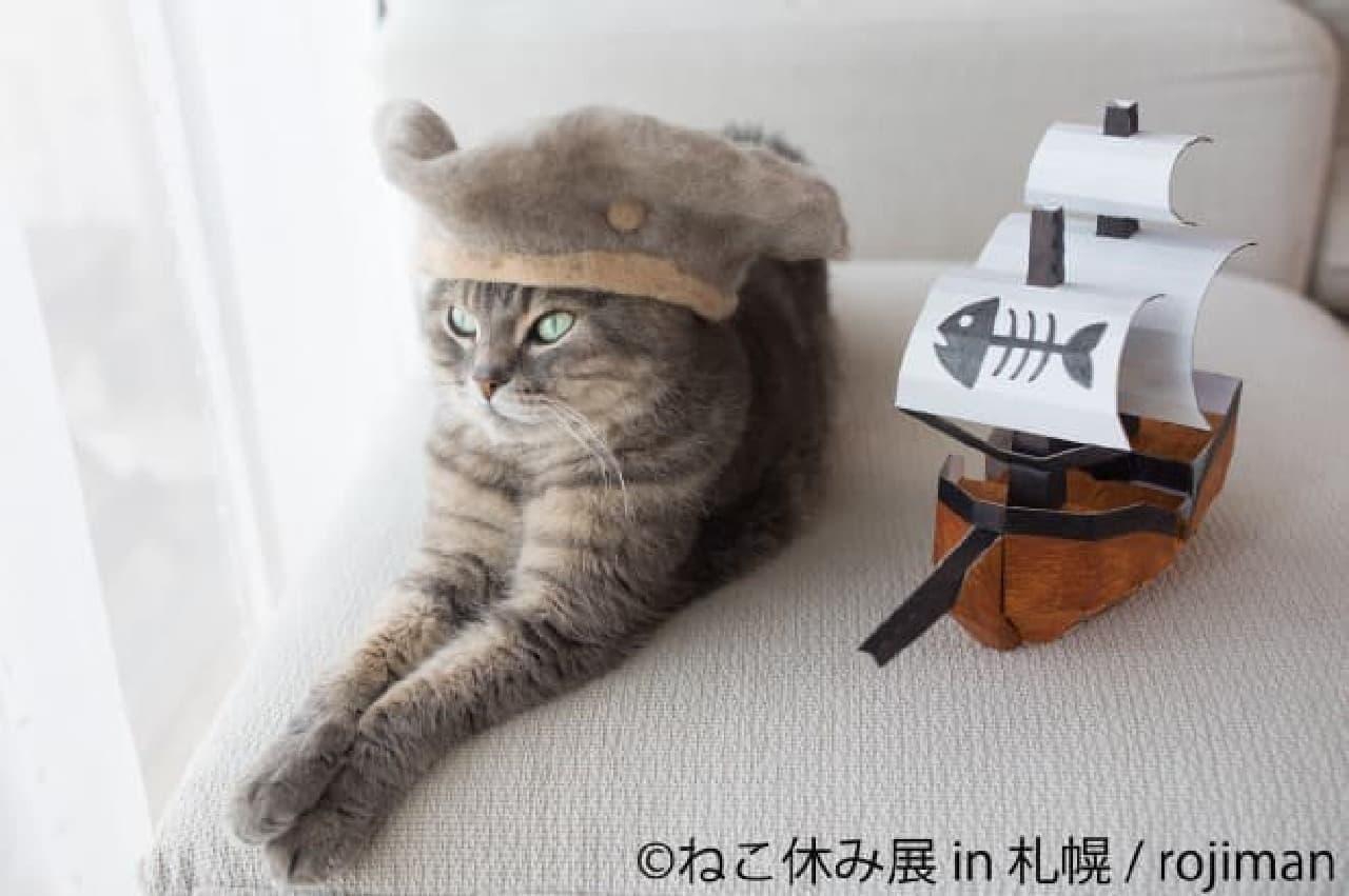 「ねこ休み展 in 札幌」、秋の巡回展
