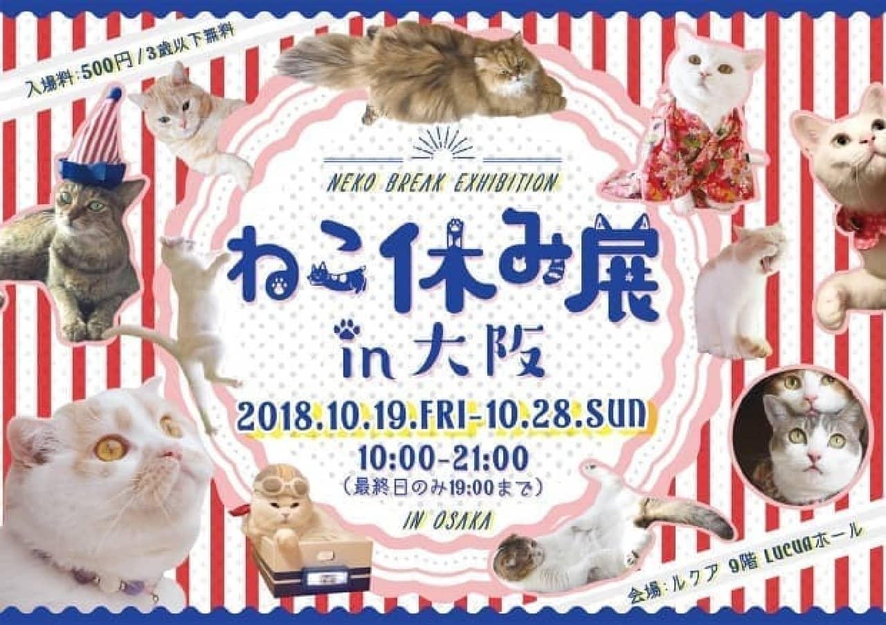 「ねこ休み展 in 大阪」、10月19日開催