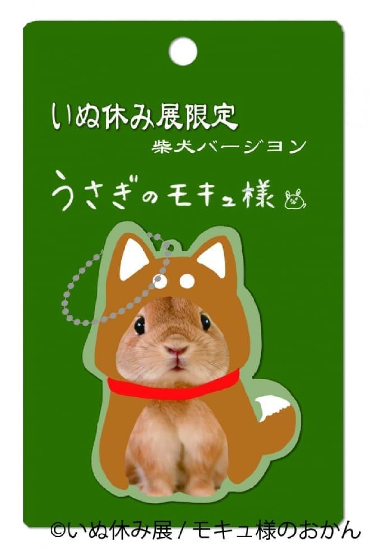 """""""犬にへーんしん!!うさぎのモキュ様"""""""
