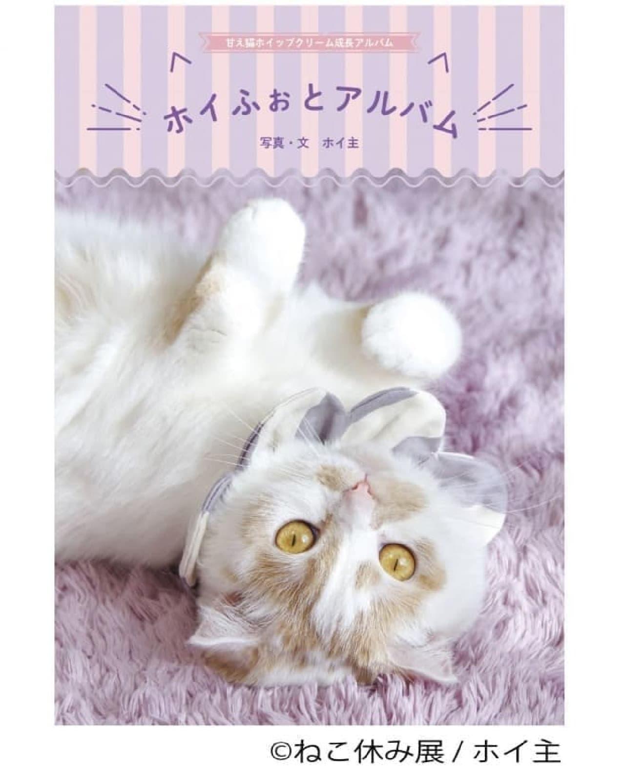 みなとみらいもネコまみれ―サンタネコたちが集合する「ねこ休み展 in 横浜みなとみらい」
