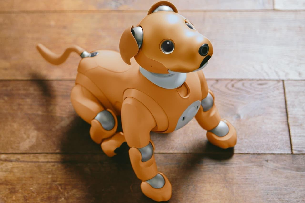 ソニー「aibo」に愛くるしいキャラメル・カラーの特別モデル