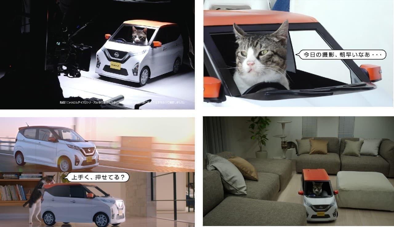 日産がネコ好きに向けて生産!「おうち用にゃっさんデイズ」プレゼントキャンペーンスタート!
