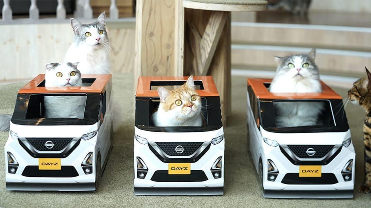 日産がネコ好きに向けて生産した「おうち用にゃっさんデイズ」が猫カフェ「MOCHA」に登場!