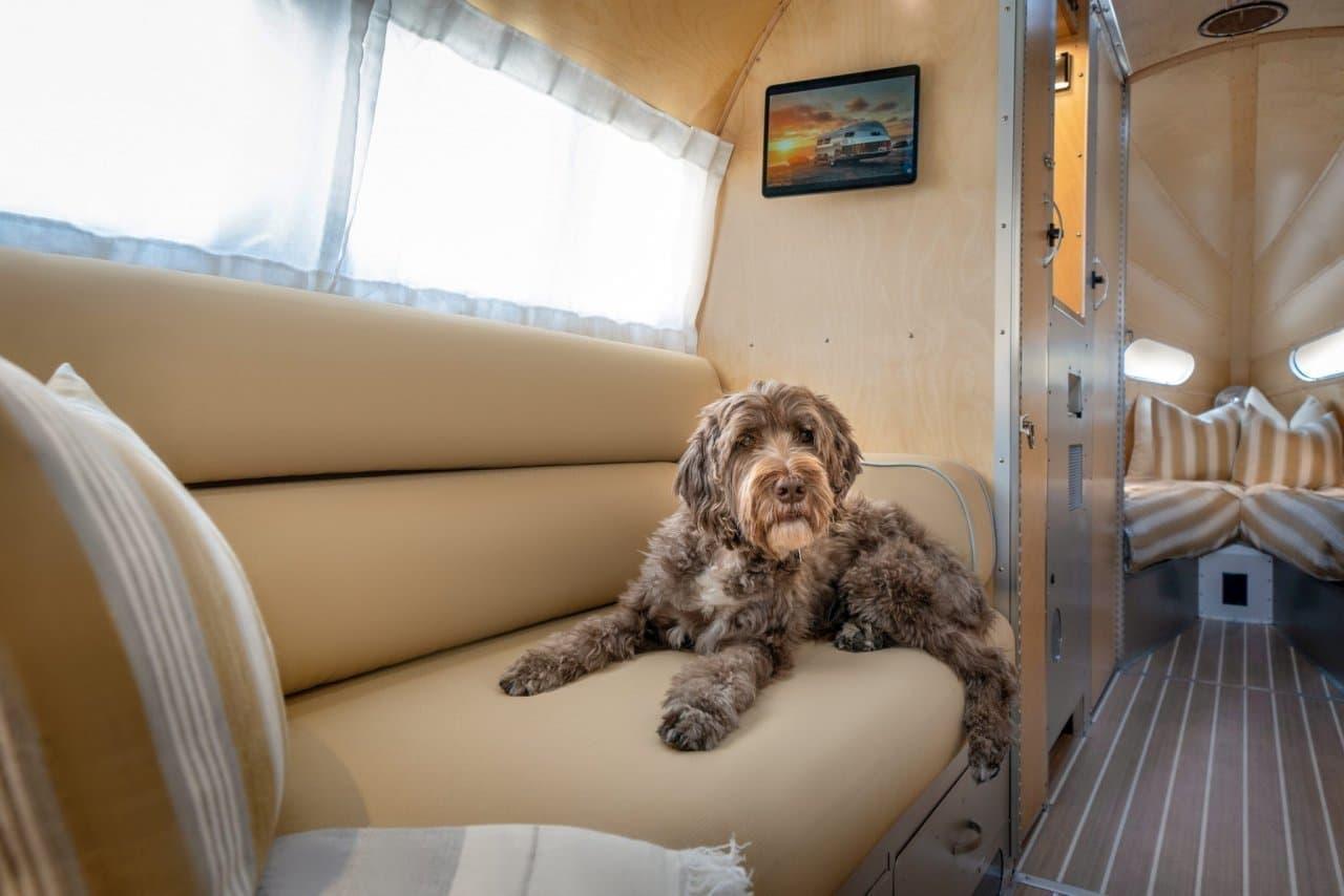 犬が喜ぶキャンピングトレーラー Bowlus「Terra Firma」