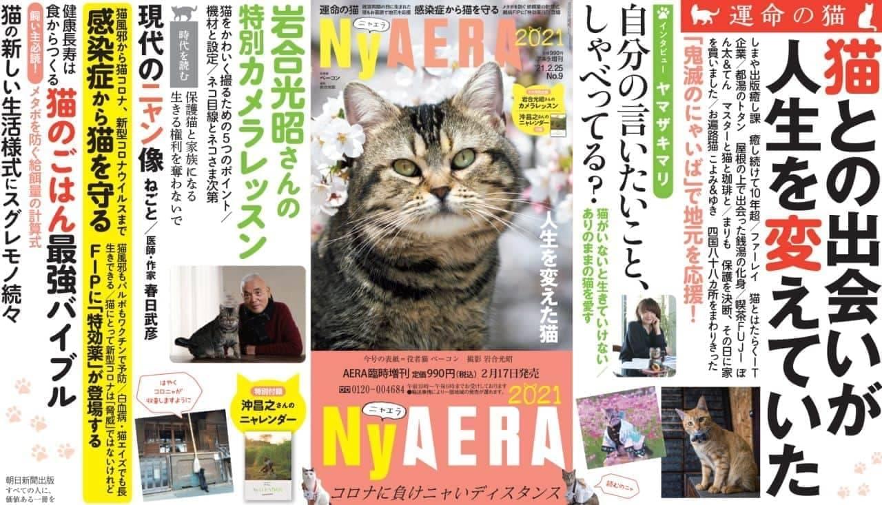 付録は沖昌之さん撮影の「ニャレンダー」! 「NyAERA(ニャエラ)」発売