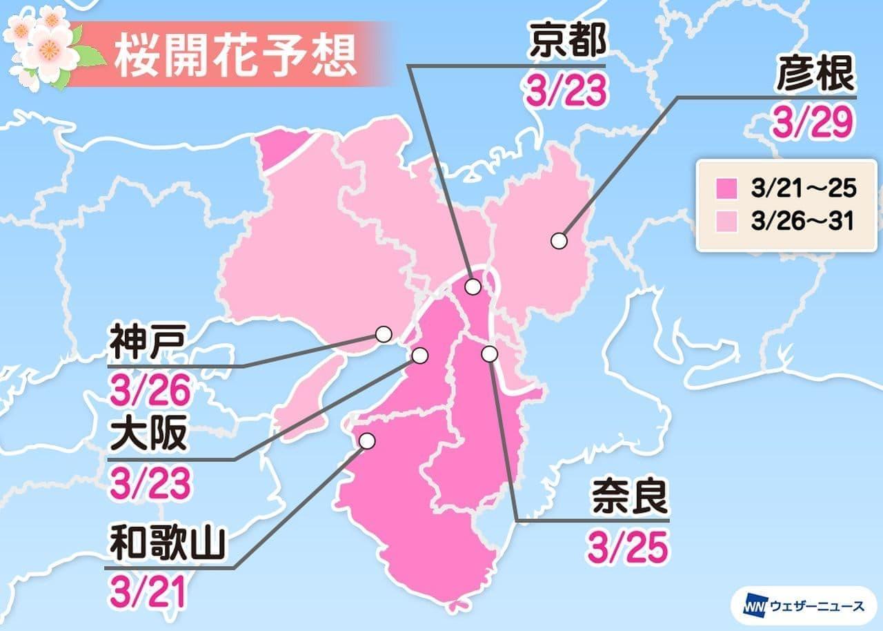 桜開花まであと2週間 ウェザーニューズが2021年「第四回桜開花予想」発表