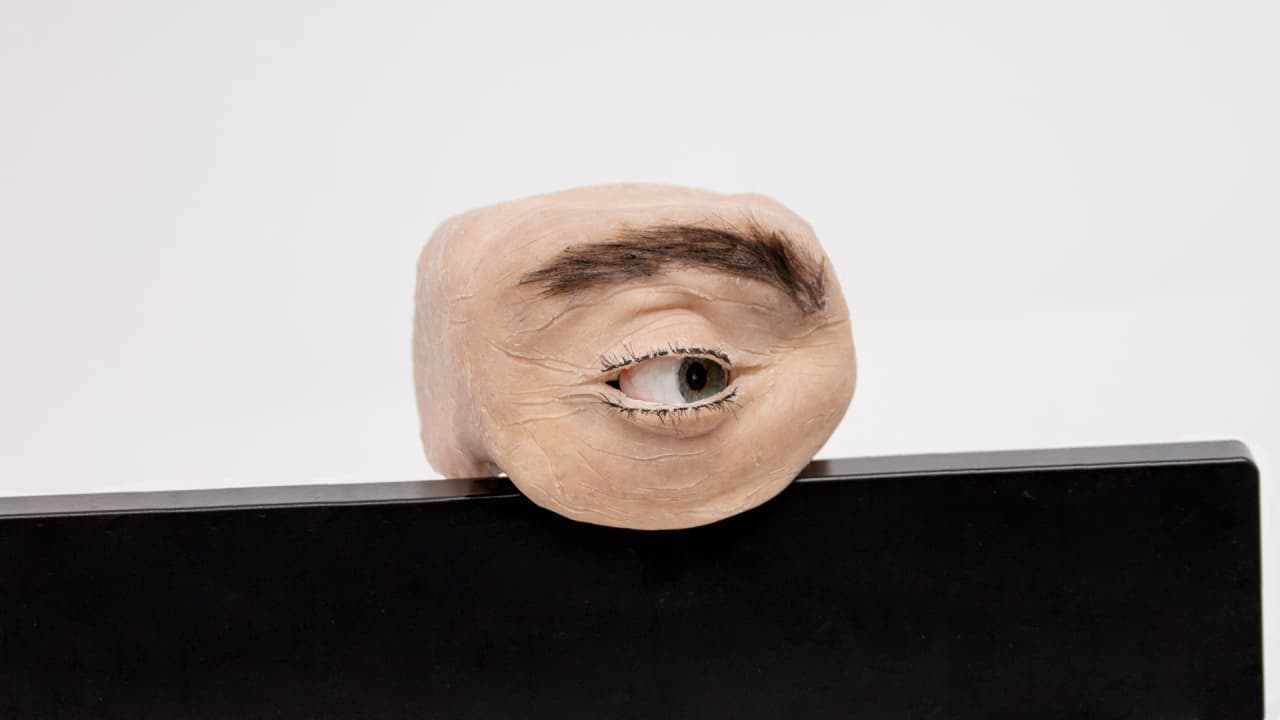 人間の目のように動くWebCam「Eyecam」
