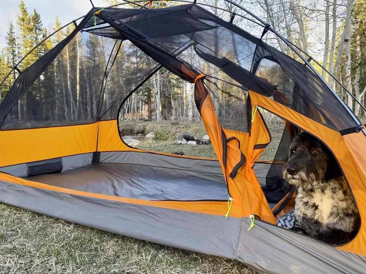 犬専用の小部屋付きテント「Kings Peakテント」 大人二人とわんこ1匹が泊まれる