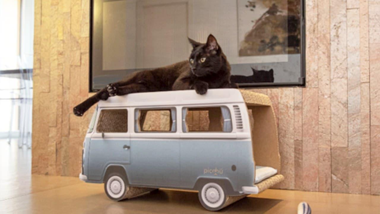 ダンボール製のペットハウス「トラック」「レインボー」「スニーカー」がMakuakeに登場